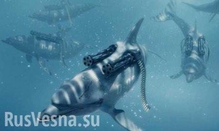 У берегов Крыма обнаружен дельфин-мутант (ФОТО)