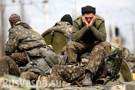 Занятия по стрельбе косят ряды ВСУ: сводка о военной ситуации в ЛНР (ВИДЕО)