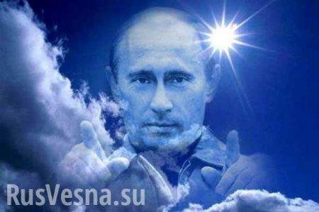 «Удивительные события»: во время прямой линии Путина из «китовой тюрьмы» начали выпускать животных (ВИДЕО)