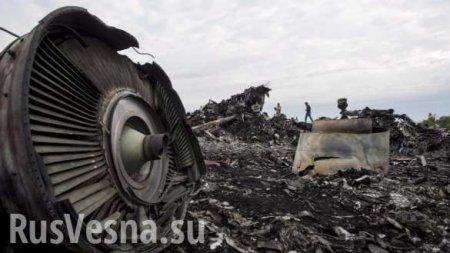Нидерланды намеренно скрыли украинскую вину в катастрофе MH17 (ВИДЕО)