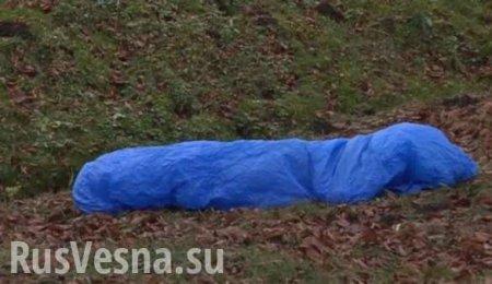 Украинец умер в столярном цеху в Польше, работодатели выбросили его тело в лесу (ФОТО)