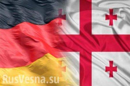 Россия в ПАСЕ: Немецкий дипломат осадил главу МИД Грузии
