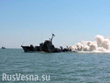 Американцы помогут украинцам «победить противника в устье Дуная» (ВИДЕО)