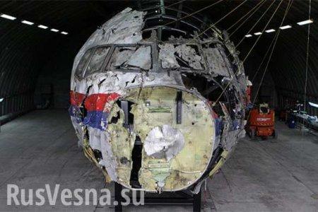 Премьер Нидерландов «конфиденциально» переговорил сПутиным окрушении MH17