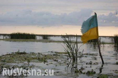 В Одессе на глазах партнёров из НАТО утопили украинские флаги (ФОТО, ВИДЕО)