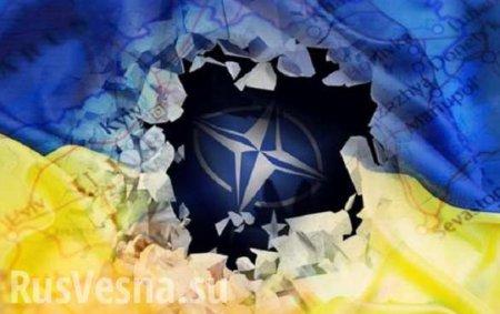 Совет НАТО отменил свой визит наУкраину