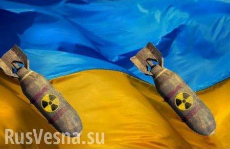 Вправительстве Украины сделали неожиданное заявление поядерному оружию