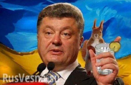 Наведущем украинском телеканале вышел сюжет обужасающих преступлениях Пор ...