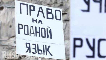 Что-то пошло нетак: киевляне отвечают навопрос оязыковом законе (ВИДЕО)