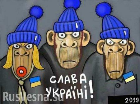 Недостаток кислорода, мигранты идефицит бананов: Чтождёт украинцев внеда ...