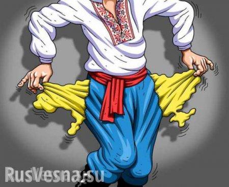 Приватизация по-хохляцки: украинские власти готовы продать страну по частям