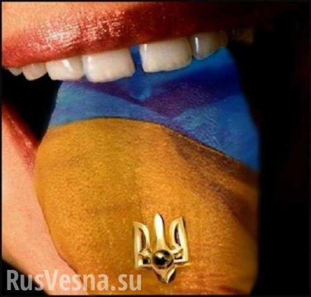 Глава «Слуги народа» сделал заявление по украинскому языку