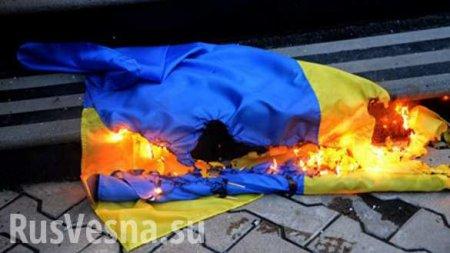 На родине Зеленского мужчину посадили за флаг Украины, брошенный на землю ( ...