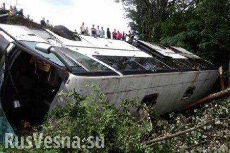 Страшное ДТП под Новороссийском: Автобус с пассажирами упал с обрыва (ВИДЕО)