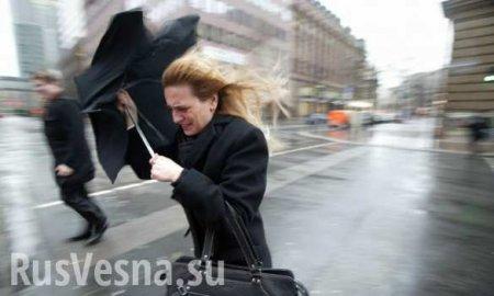 Собянин предупредил о «чрезвычайно серьёзной» непогоде в Москве