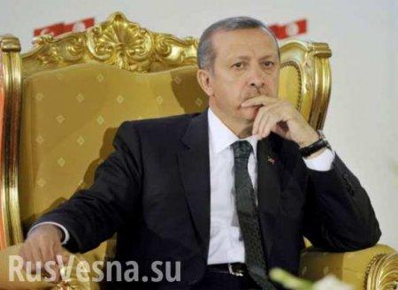 Турецкий Vatan призвал Эрдогана признать воссоединение Крыма с Россией