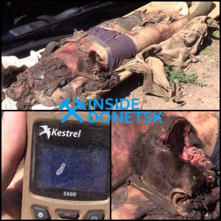 «Чтоб негнил, как труп безродной собаки»— тело украинского боевика эвакуировали военные ЛНР и«афганцы» (ВИДЕО, ФОТО 21+)