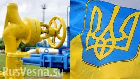 На Украине заявили о «плане Б» на случай прекращения транзита газа из Росси ...