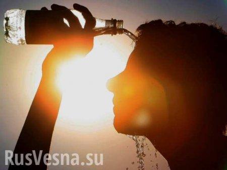 Россиянам пообещали 30-градусную жару