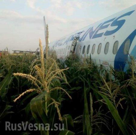 Спасение 226 человек: подробности жёсткой посадки лайнера в Подмосковье (ФОТО, ВИДЕО)