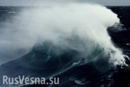 Тайфун «Кроса»: сотни иностранных судов спрятались вбухтах Приморья (ВИДЕО ...