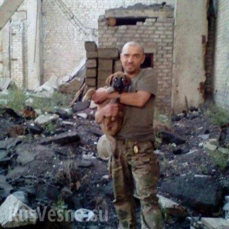 Кровавая жатва на Донбассе: появились данные группы уничтоженных ночью карателей (ФОТО, ВИДЕО)