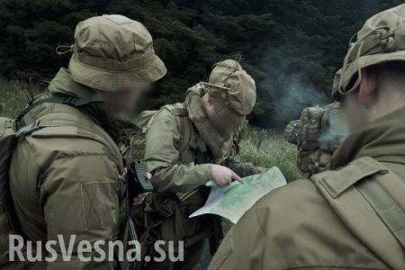 Центр спецопераций готовит удары по позициям карателей на Донбассе (ВИДЕО)