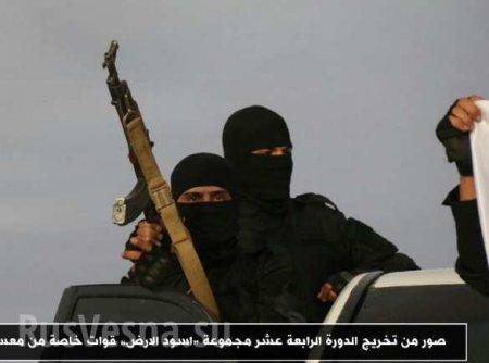 Сирии грозит новая война (ФОТО)