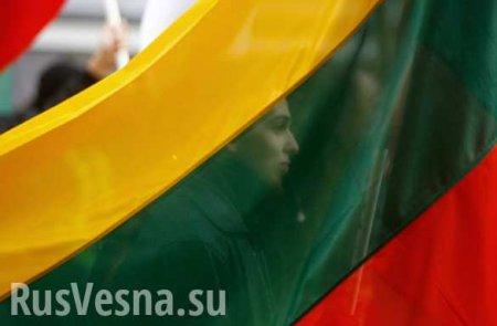 «Ужасное рабство»: Литовский политик сравнил сограждан с украинцами и заяви ...