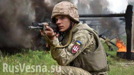 Каратели самоуничтожаются, идёт охота на солдат 59 бригады ВСУ: сводка сфр ...