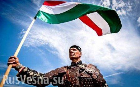 Лишить права голоса: ЕС начинает «публичную порку» Венгрии
