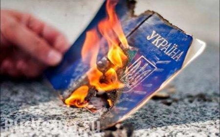 Предложение «сжечь украинский паспорт» ещё никогда не было таким актуальным ...