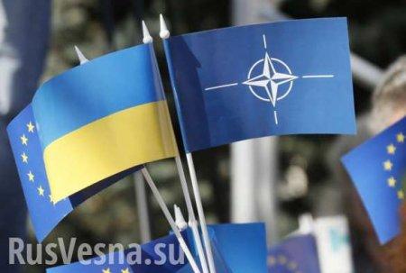 Украина меняет риторику по членству в НАТО