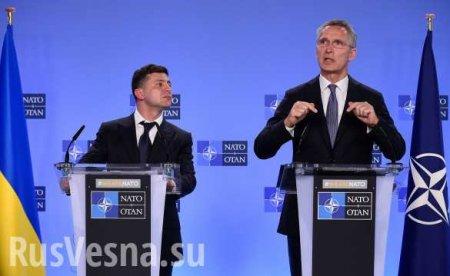 Столтенберг: Зеленский поднимал вопрос членства дляУкраины вНАТО