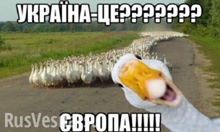 СНГ— этоклуб неудачников, — вице-премьер Украины (ВИДЕО)
