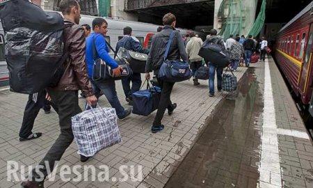 Украинские гастарбайтеры наводят ужас на Эстонию