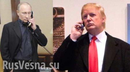 Путин рассказал о возможности публикации переговоров с Трампом