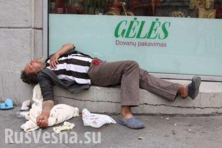 Нормально жить невозможно: социальная ситуация в Прибалтике продолжает ухудшаться
