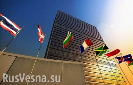 Россия выступила против американского заявления в СБ ООН по операции Турции ...