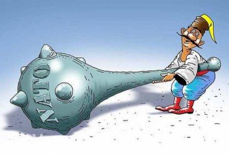 Неожиданно: Украина небудет проситься вНАТО
