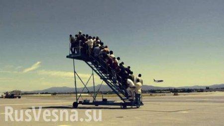 «Рождённый ползать»: МАУ отменяет международные рейсы из Киева (ВИДЕО)