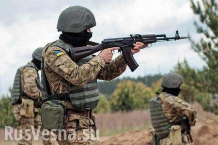 На Донбассе начались столкновения ВСУ и нацистов, есть потери: сводка о вое ...
