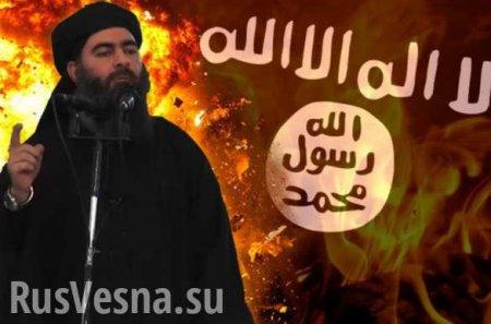 Сестра главаря ИГИЛ схвачена в Сирии
