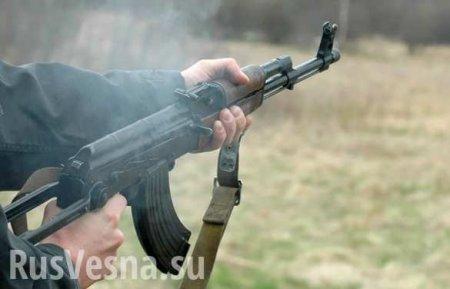 Украинский шок: Боевики ворвались наканал Порошенко и«расстреляли» ведуще ...