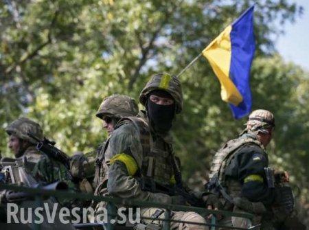 Разведение сил на Донбассе: В ДНР посоветовали западным политикам внимательно читать Минские соглашения