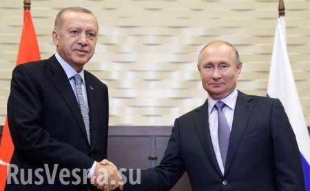 Путин иЭрдоган обсудили «Турецкий поток» ивоенное сотрудничество