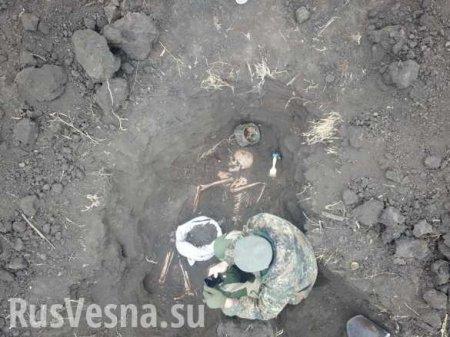 Земля Донбасса возвращает останки солдат Великой Отечественной (ФОТО)
