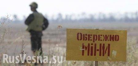 Украина вошла в топ-5 стран, где люди гибнут от разрывов мин