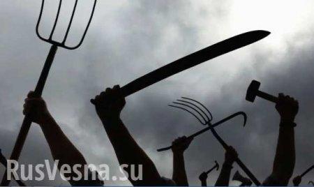 «Позор уродов! Слуги МВФ и Сороса бросают Украину в пропасть!» — нардеп (ВИДЕО)