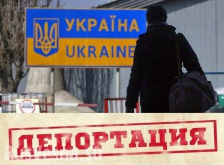Как связаны планы Украины надепортацию народа Донбасса ипродажу земли,—  ...